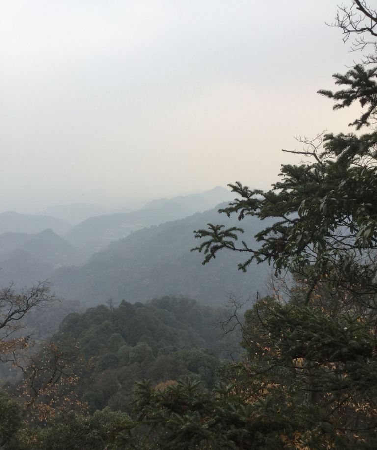I am standing at the highest point of Mont. Qing Cheng (青城山). It is a tower built for Daoism. The air feels cold and clean. I took a picture of all the small mountain around. It was a bit hazy as well, and you may not see the trees clearly.